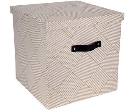 Skladovací box Texas