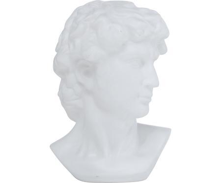 Dekorace Ludovico