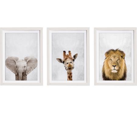 Sada zarámovaných digitálních tisků Wild Animals, 3díly