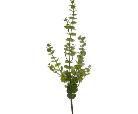 Květinová dekorace Eukalyptus